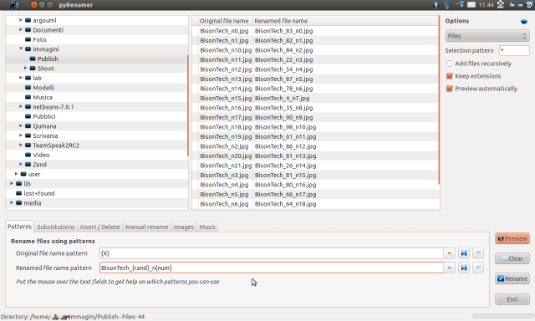 pyRenamer, come rinominare tanti file su Linux
