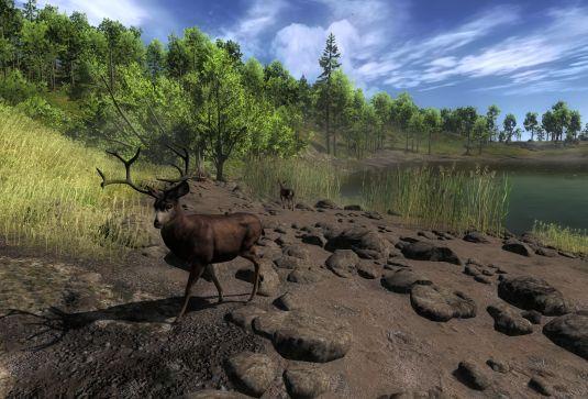 The hunter tutti a caccia ma per finta ecco un perfetto for Simulatore di costruzione di case online